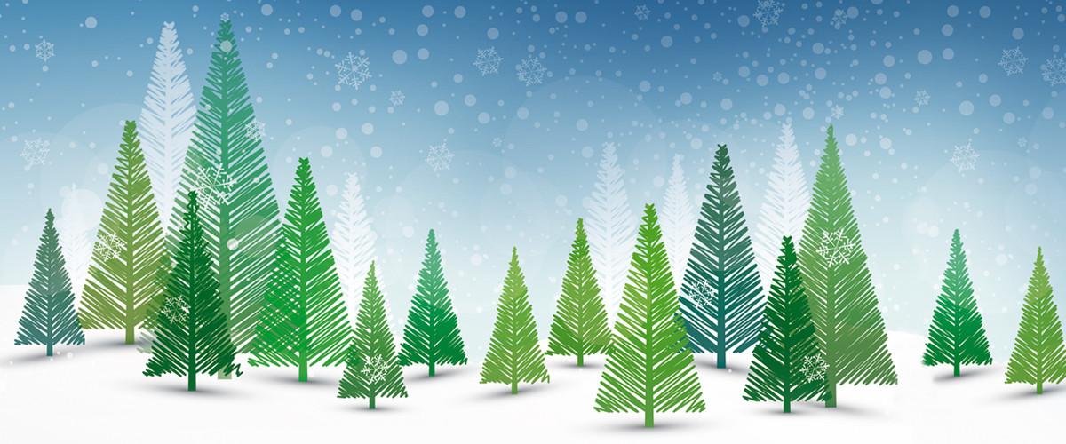 Winter-Wunder